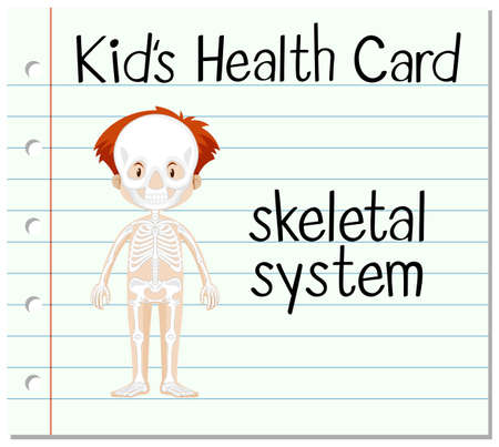 skeletal system: Health card with skeletal system illustration