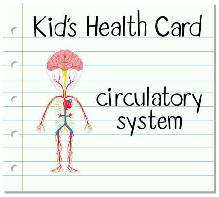 circulatory: Health card with circulatory system illustration