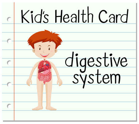 digestive system: Health card with digestive system illustration