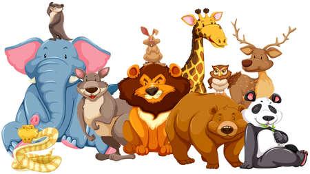 wild living: Wild animals living together illustration