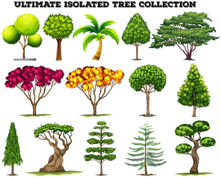 ultimate: Ultimate isolated tree collection set illustration