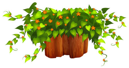 leaf close up: Flowers and plant on the log illustration