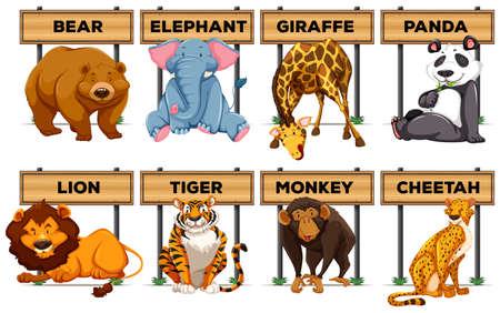 Muchos tipo de animales con signos ilustración madera