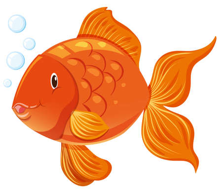 exotic fish: Goldfish with happy face illustration