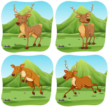 endangered: Deers in four different scenes illustration