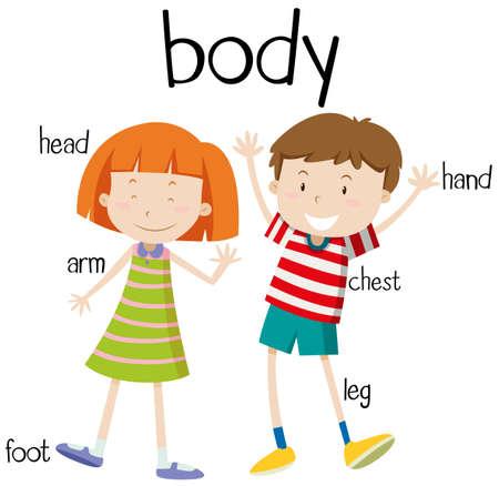 body parts: Human body parts diagram illustration Illustration