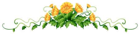 Plant met gele bloemen illustratie