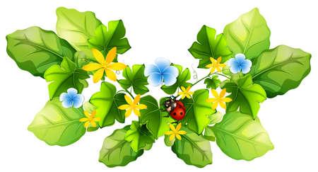 gardening: Plant and little ladybug illustration Illustration