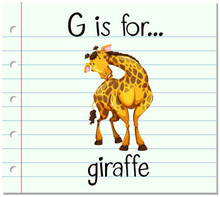 g giraffe: Flashcard letter G is for giraffe illustration Illustration