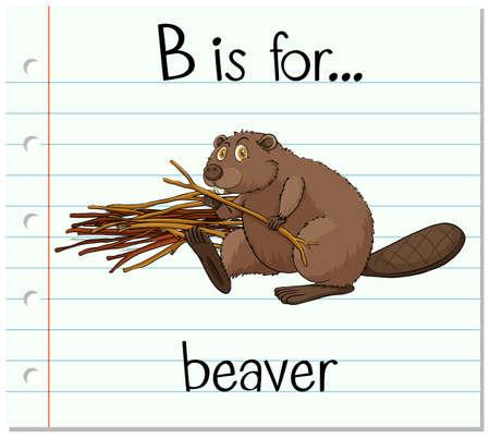 beaver: Flashcard letter B is for beaver illustration