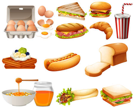 hotdog: Food set with different kind of meals illustration