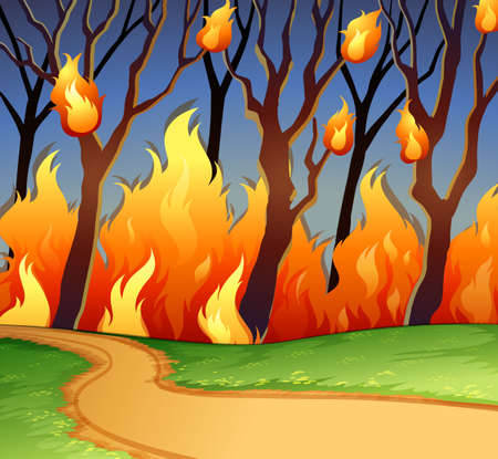 wild fire: Wild fire in the forest illustration