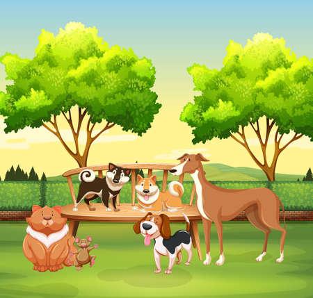 Diferentes tipos de mascotas en la ilustración parque Ilustración de vector