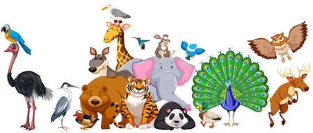Wilde Tiere in der Gruppe Abbildung stehend