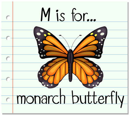 monarch butterfly: Flashcard letter M is for monarch butterfly illustration