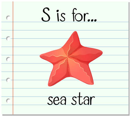 phonetics: Flashcard letter S is for sea star illustration