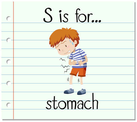 stomach illustration: Flashcard letter S is for stomach illustration