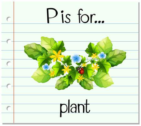 p illustration: Flashcard letter P is for plant illustration