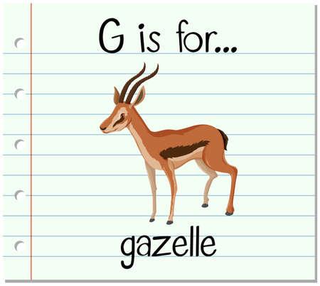 gazelle: Flashcard letter G is for gazelle illustration Illustration