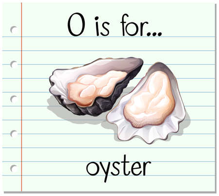 oyster: Flashcard letter O is for oyster illustration