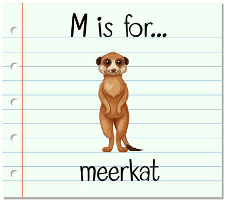 endangered: Flashcard letter M is for meerkat illustration
