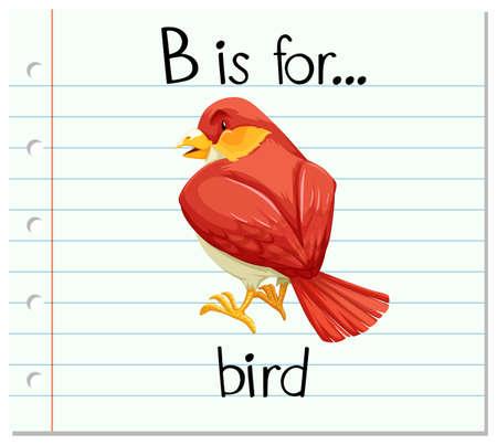 flashes: Flashcard letter B is for bird illustration Illustration