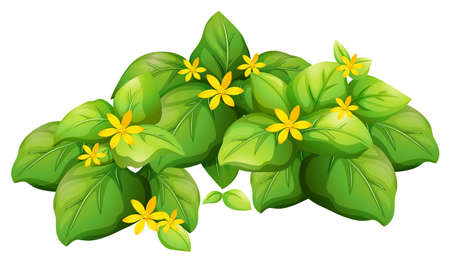 flower decoration: Plant with green leaves and yellow flower illustration
