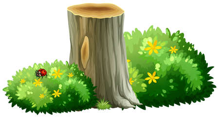 bushes: Log and bushes with flowers illustration
