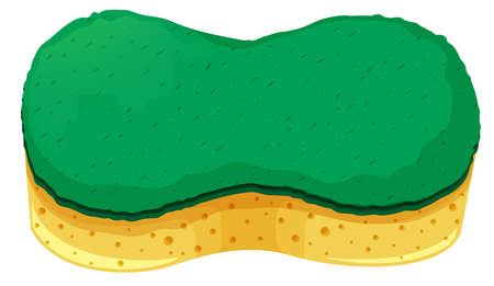sponge: Sponge with two layers illustration