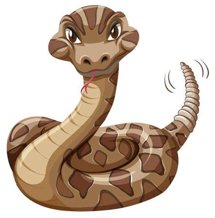 serpiente de cascabel: Serpiente de cascabel en el fondo blanco ilustración
