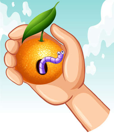 earthworm: Worm in rotten orange illustration