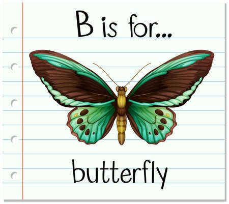 phonetics: Flashcard letter B is for butterfly illustration
