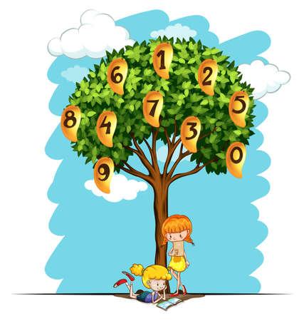mango tree: Numbers on mango tree illustration Illustration