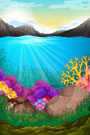 alpine plants: Scene with under the ocean illustration