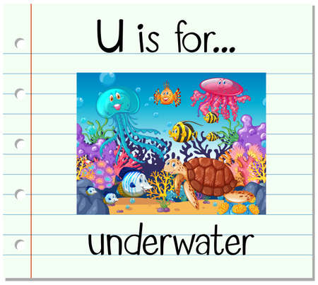 learning series: Flashcard letter U is for underwater illustration