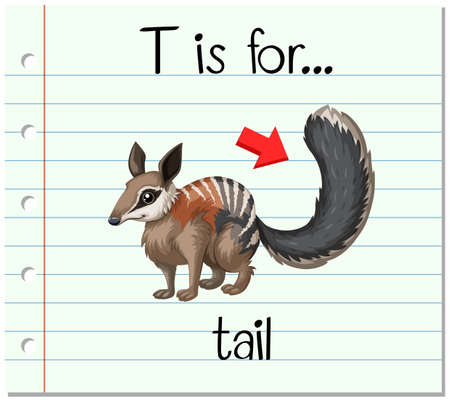 learning series: Flashcard letter T is for tail illustration