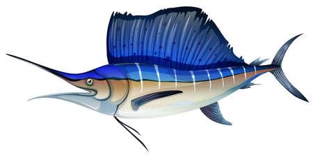 swordfish: Swordfish with blue fin illustration