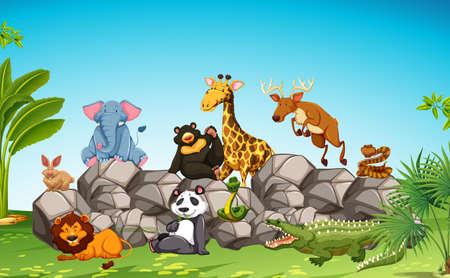 wild living: Wild animals sitting on the rock illustration