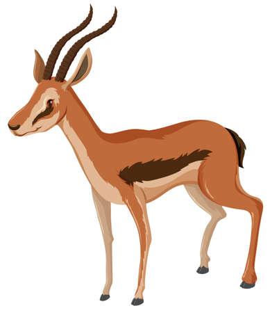 bocinas: Ant�lope con la ilustraci�n de cuernos afilados