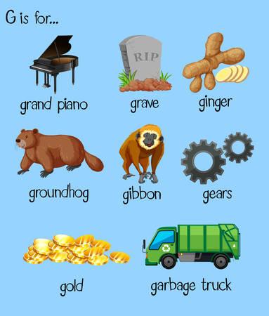 Many words for alphabet G illustration