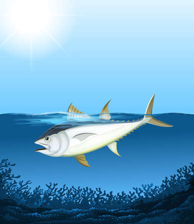 bluefin tuna: Tuna swimming in the sea illustration Illustration