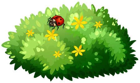 Natuur design met bush en bug illustratie
