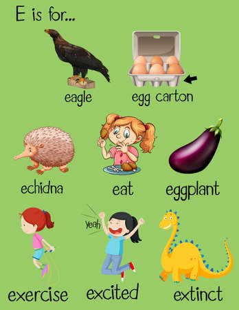 phonics: Poster letter E and different words illustration Illustration