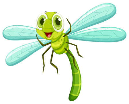 Dragonfly with happy face illustration