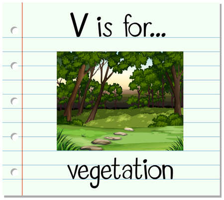 vegetation: Flashcard letter V is for vegetation illustration Illustration