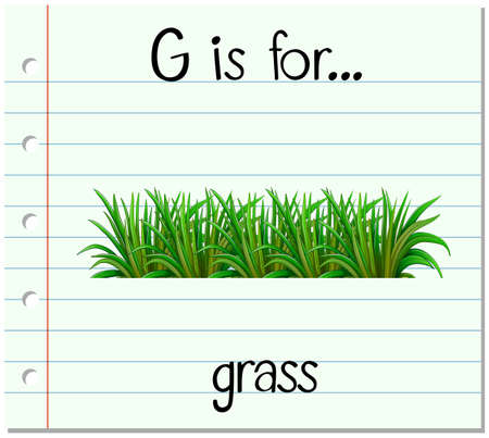 young leaves: Flashcard letter G is for grass illustration