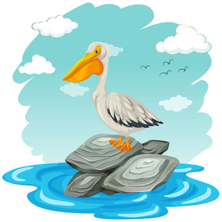Pelican bird standing on rocks illustration