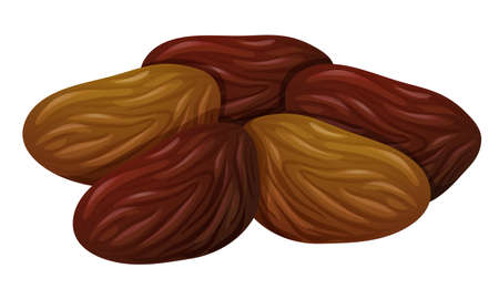 preserve: Dried fruits on white background illustration Illustration