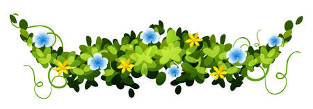 creeper: Nature design with leaves and flowers illustration