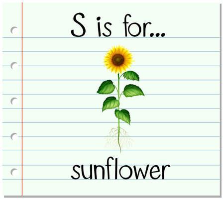 spells: Flashcard letter S is for sunflower illustration Illustration